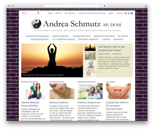 Yamidoo Magazine newspaper WordPress theme - acupunctureaventura.com