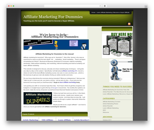 Best WordPress template Affiliate Internet Marketing theme - affiliatemarketingfordummiessite.com