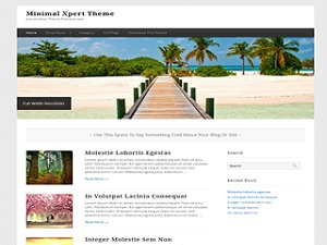 Minimal Xpert WordPress theme