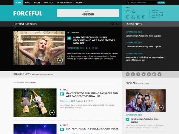 Forceful Lite WordPress news theme