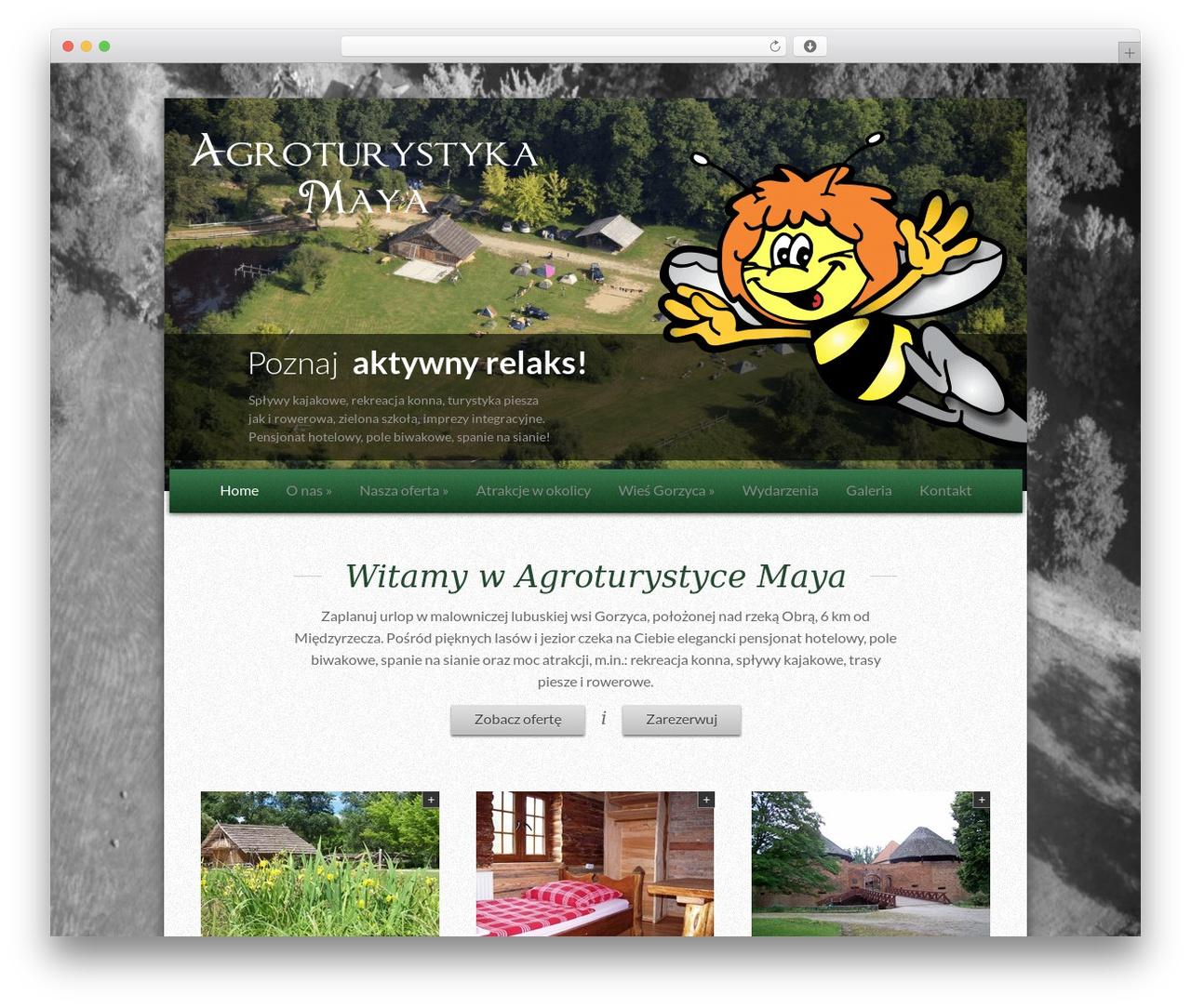 Lamoon WordPress theme - agroturmaya.pl
