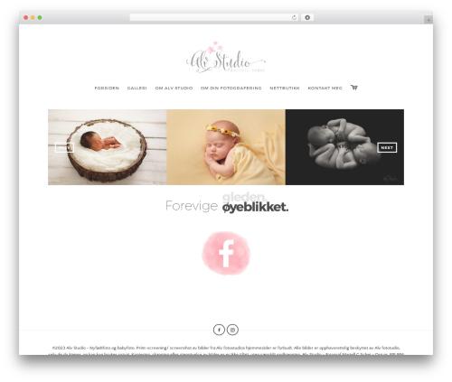 WordPress product-catalog plugin - alvstudio.no