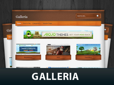 Galleria theme WordPress