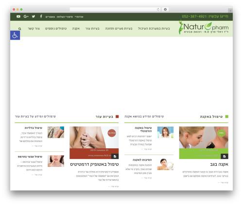 Scoop template WordPress - acti.co.il