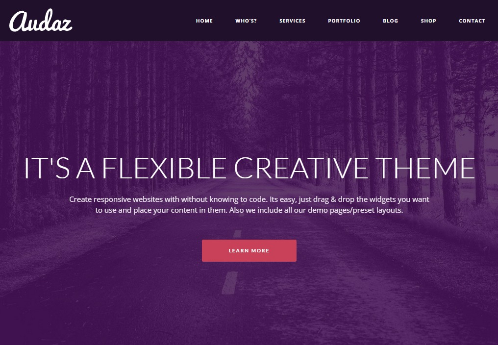 Audaz Theme theme WordPress