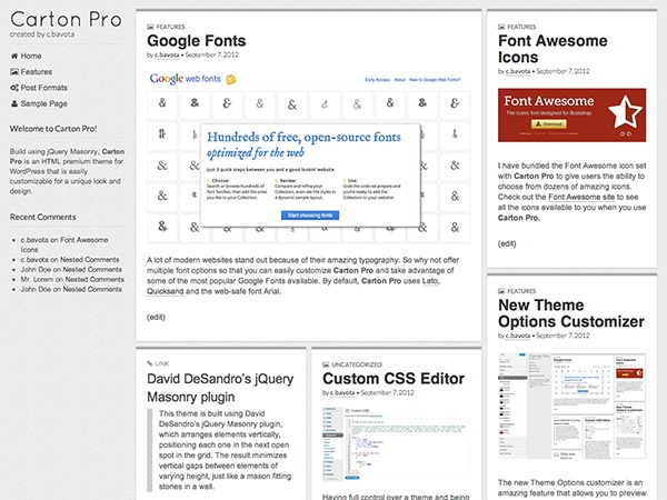 Carton Pro WordPress gallery theme