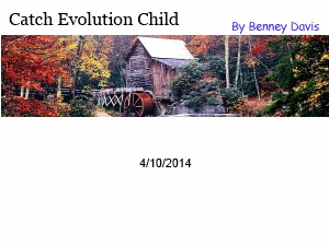 Catch Evolution Child WordPress store theme