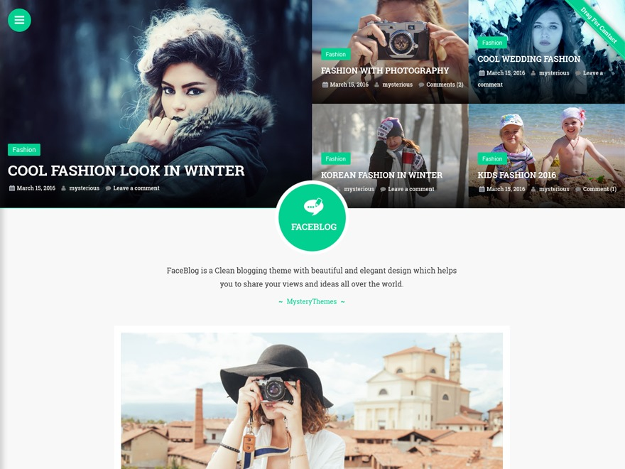 FaceBlog best free WordPress theme