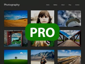 Photography PRO Child Theme WordPress theme image