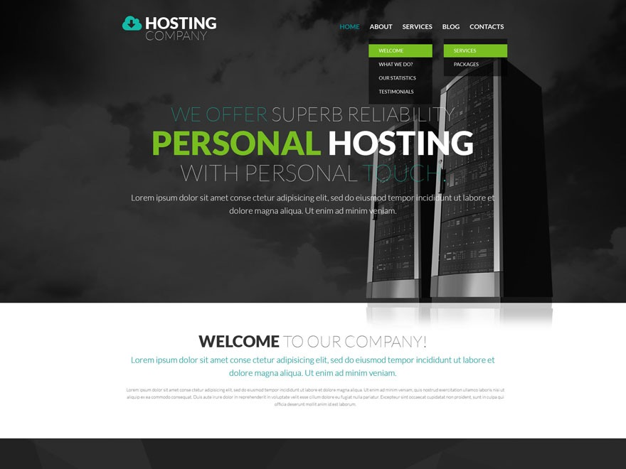 theme53367 best WordPress theme
