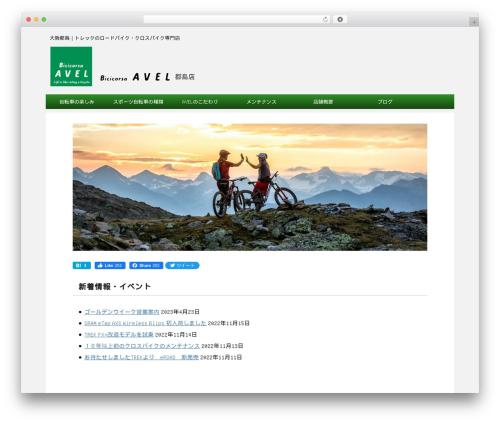 micata2 best WordPress theme - avel.jp