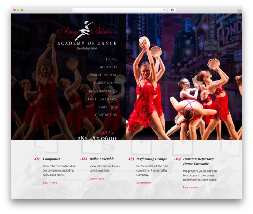 WordPress theme Big Splash Web Design - amyblakedance.com