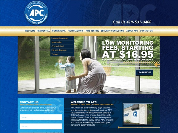 Asset Protection Corp best WordPress theme