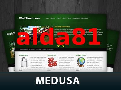 WordPress website template Medusa
