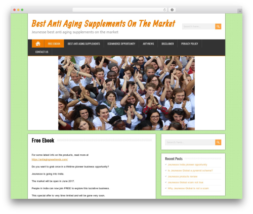 BrickYard free WP theme - antiaging2015.com