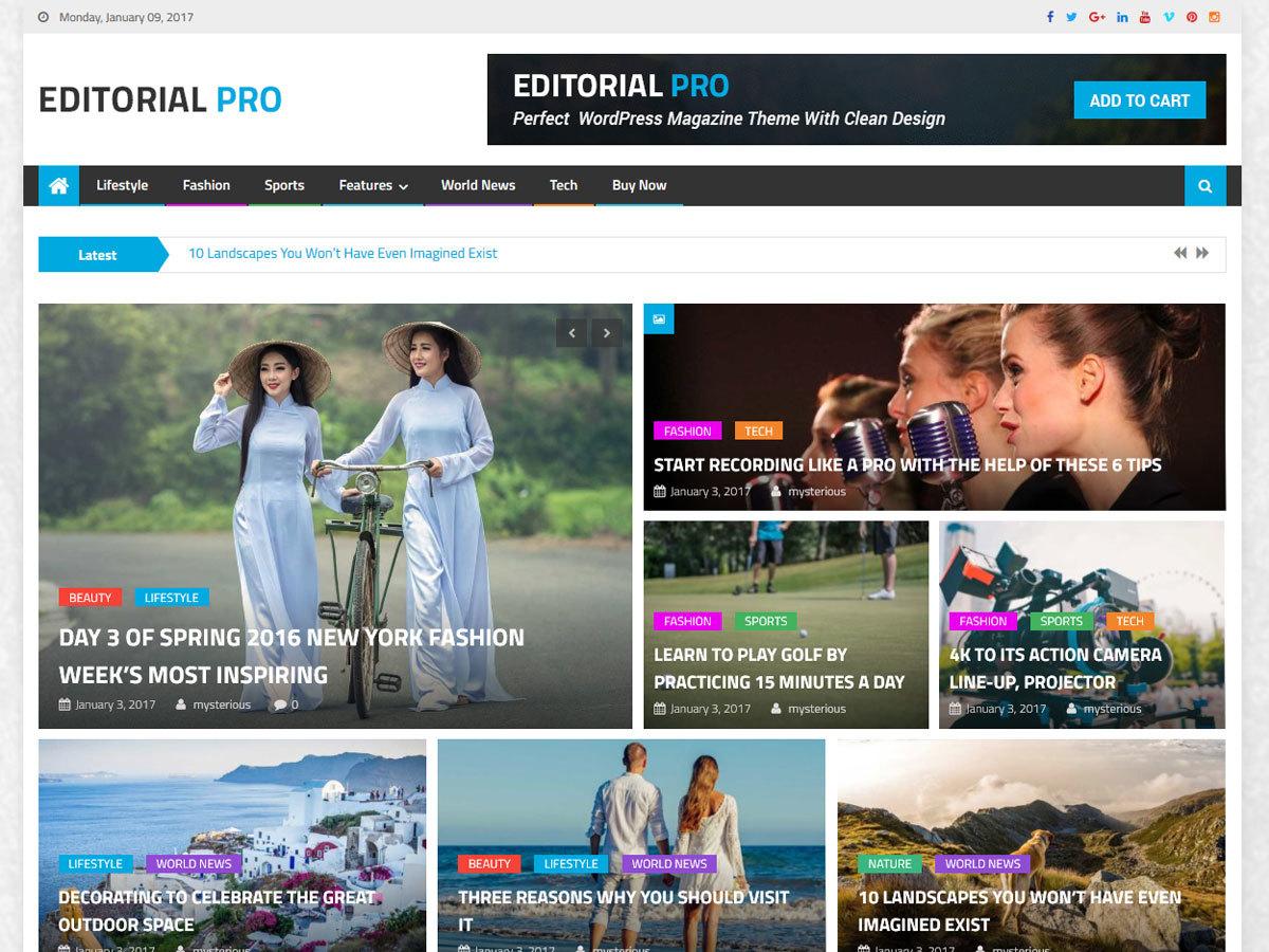 Editorial Pro WordPress news theme