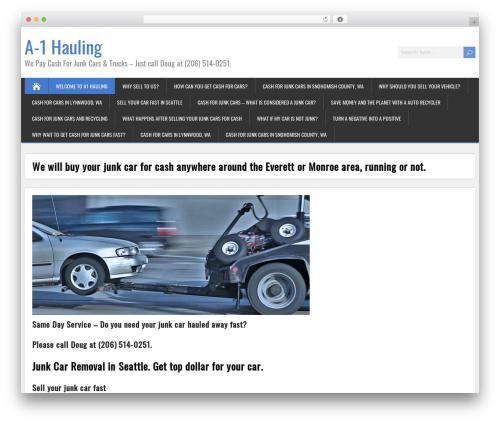 SongWriter top WordPress theme - a1haulingcar.com