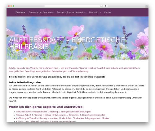 Flat WordPress free download - auftriebskraft.ch