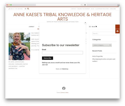 Conica best free WordPress theme - annekaese.com