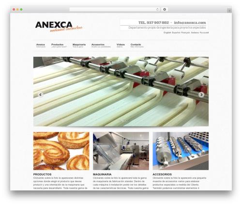 Super Skeleton template WordPress - anexca.com