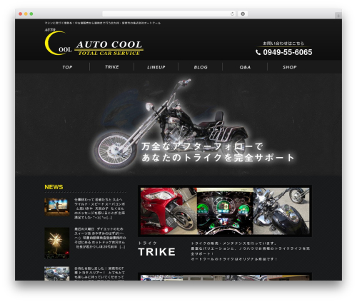 Free WordPress ARVE Advanced Responsive Video Embedder (YouTube, Vimeo, HTML5 Video …) plugin - autocool.co.jp