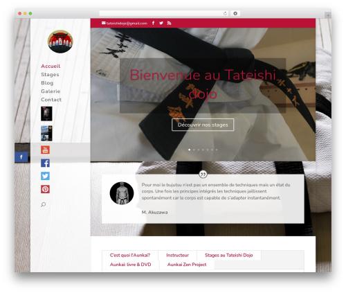 Divi WordPress theme - aunkaibujutsulyon.com