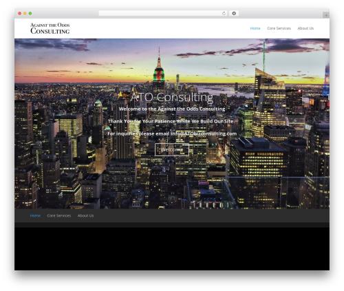 Divi WordPress theme - atobizconsulting.com