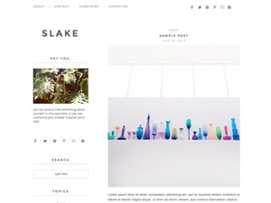 Best WordPress template slake