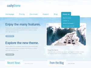 Cushy premium WordPress theme