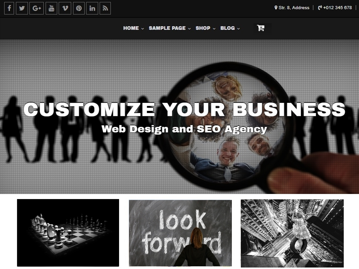 Customize WP theme