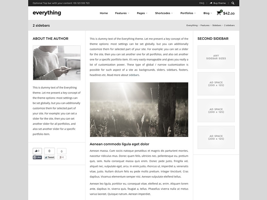 Everything Child premium WordPress theme