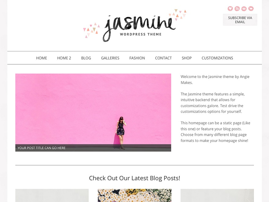 Jasmine - Premium WordPress theme