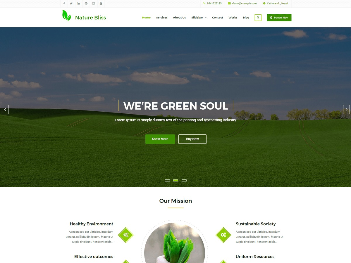 Nature Bliss business WordPress theme