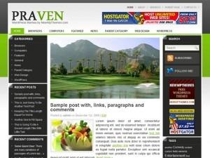 Praven WordPress blog template