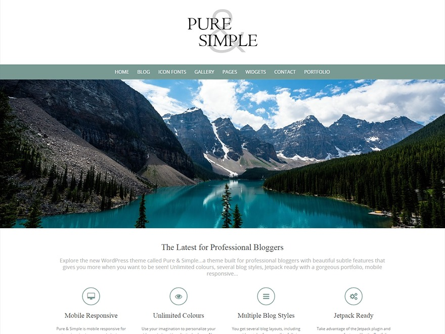 Pure & Simple Child photography WordPress theme