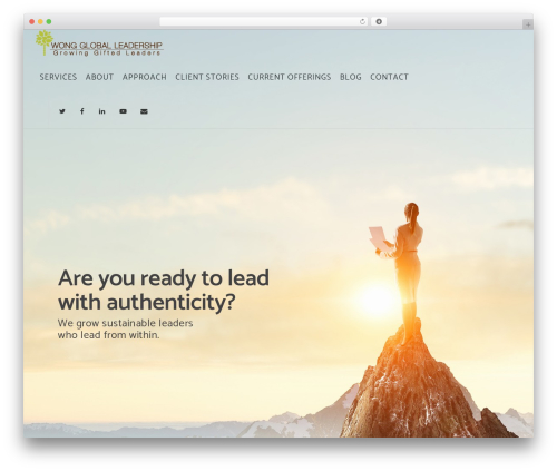 Salient theme WordPress - wongleadership.com