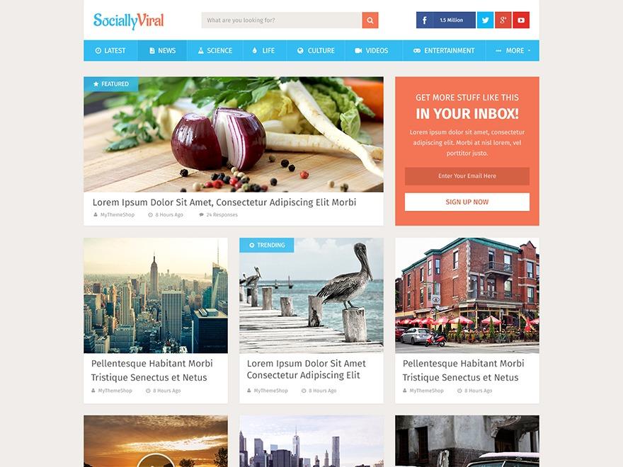 SociallyViral by MyThemeShop Child WordPress ecommerce template