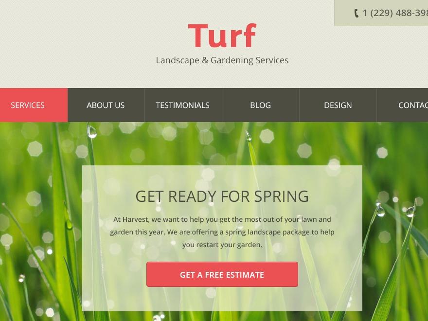Theme WordPress Turf