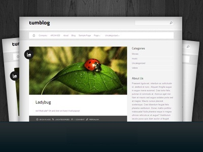 Tumblog WordPress blog theme