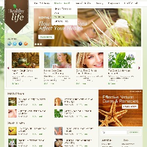 WordPress Theme 1269 WordPress theme