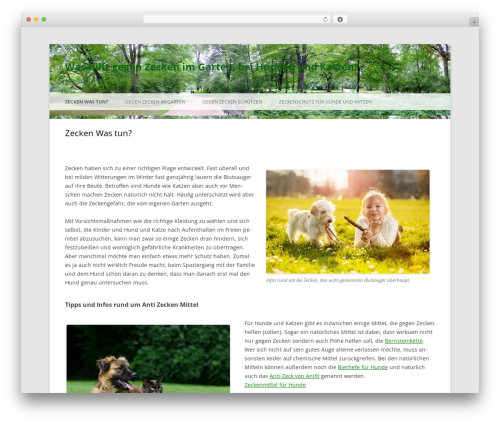 Twenty Twelve free WordPress theme - antizecken.com
