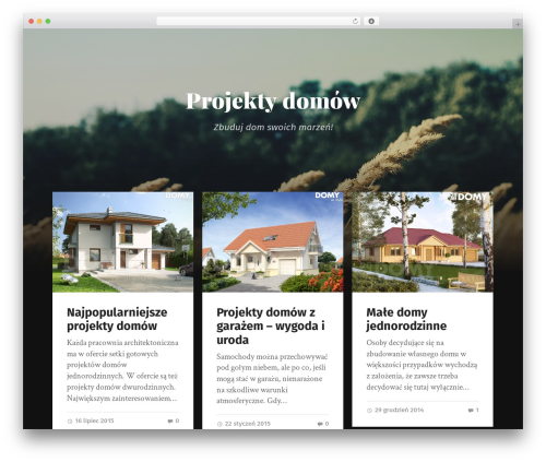WordPress template Garfunkel - architekt-dom.pl