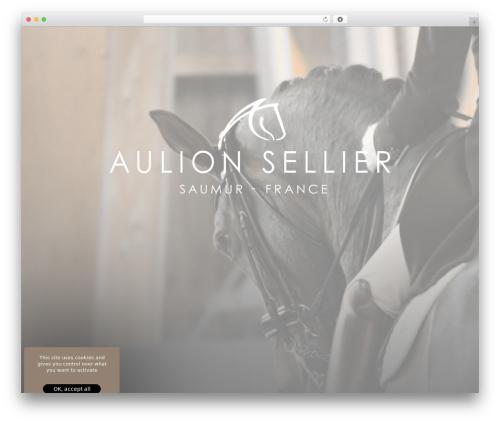 Theme Atmosphère theme WordPress - aulion-sellier.horse