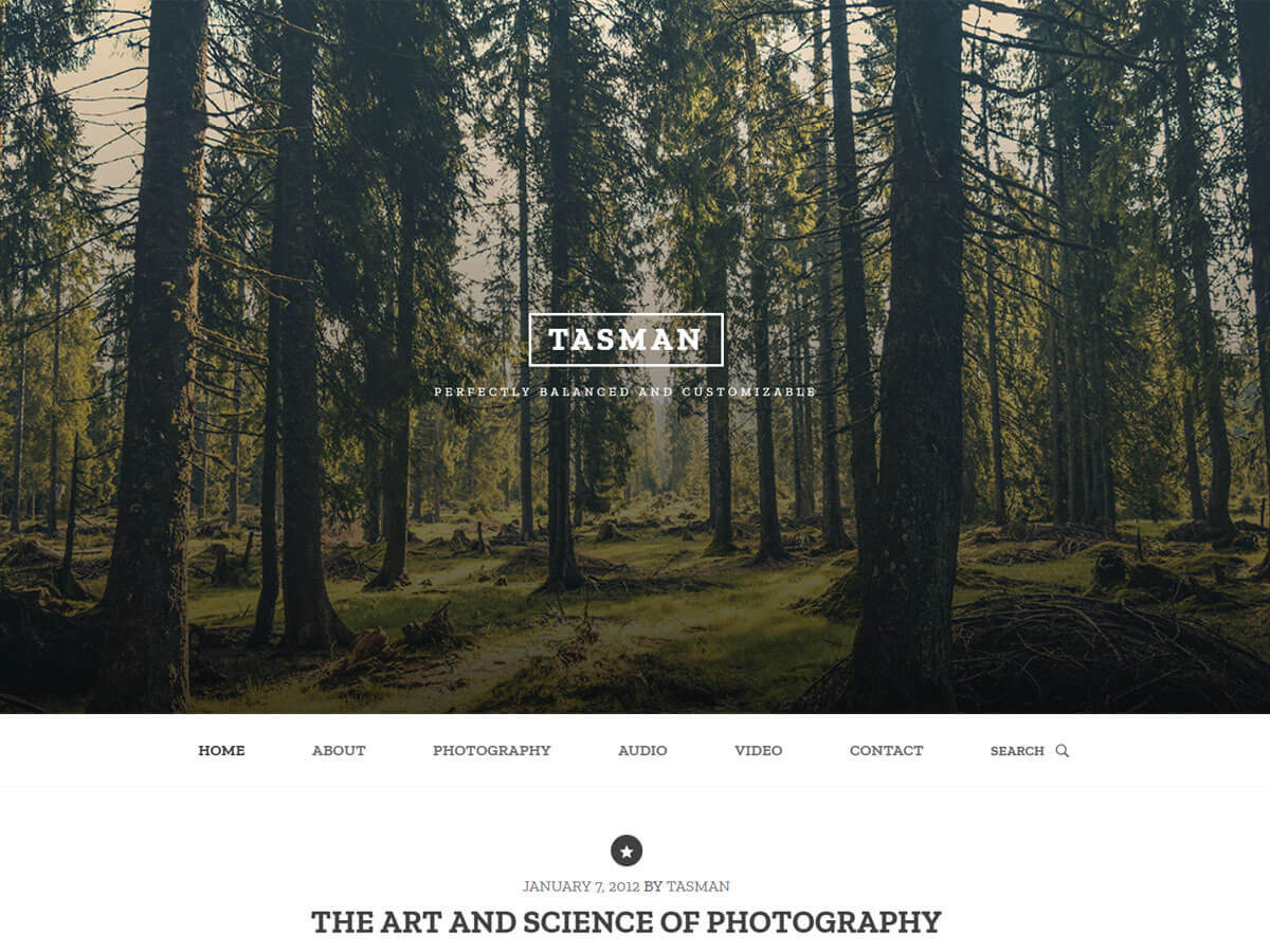tasman WordPress theme