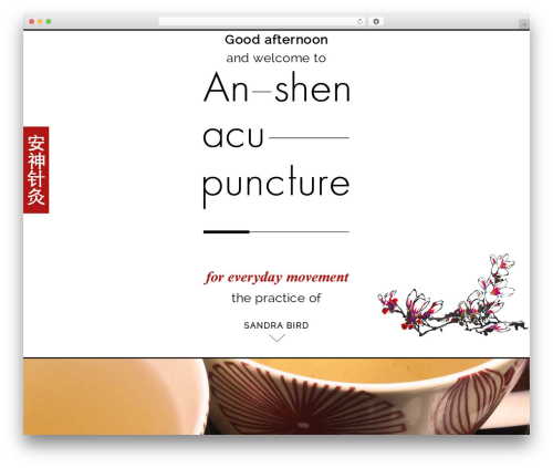 WordPress ut-portfolio plugin - anshenacupuncture.co.uk