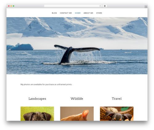 Divi WordPress website template - andreajordanphotography.com