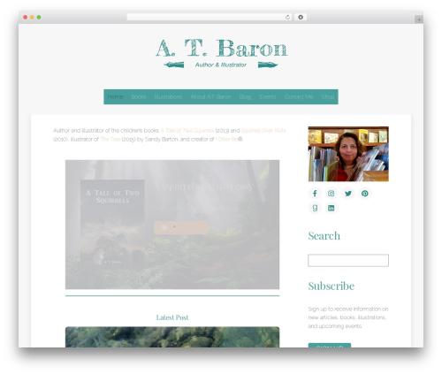 Theme WordPress Themify Ultra - atbaron.com