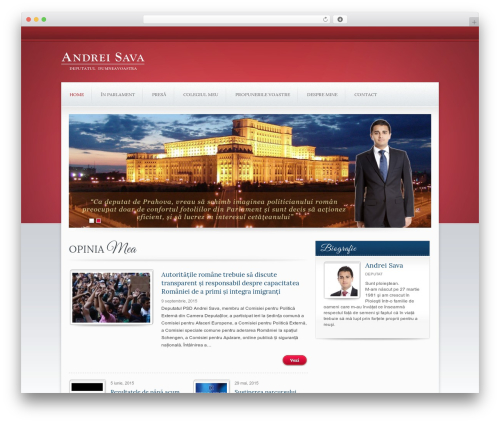 Theme WordPress Candidate - andreisava.ro