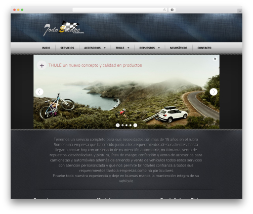 Radial Premium Theme WordPress theme - automotriztodoescape.cl