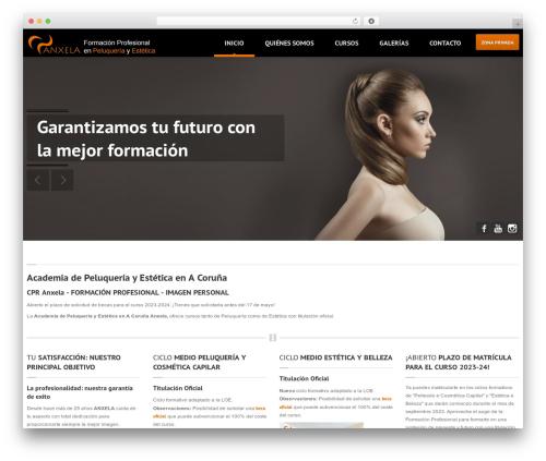 WordPress theme Hairpress WP Theme (Share on Theme123.Net) - anxela.com